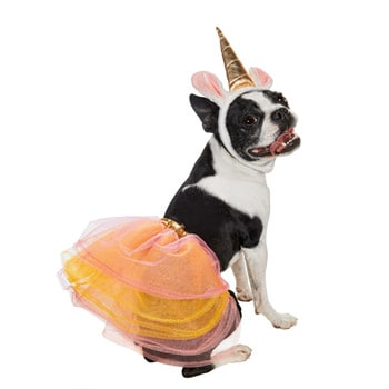dog-unicorn-costume