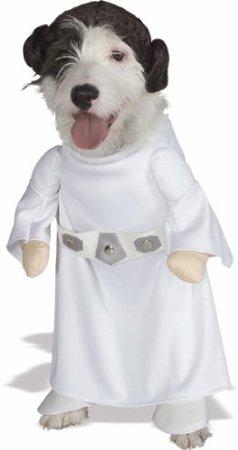 dog star wars costume