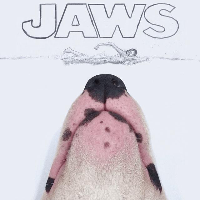 jaws-dog