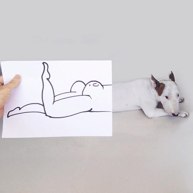 nakie-dog