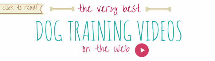 best dog training videos on web