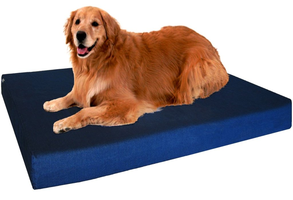 8 Best Dog Beds For Large Dogs Dog Bed Reviews