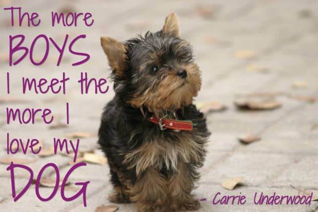 25 Dog Quotes With Pictures