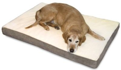 8 best dog beds for large dogs | dog bed reviews