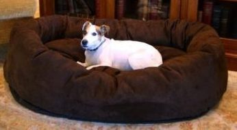 Majestic Bagel Large Dog Bed Cheap Dog Beds For Large Dogs