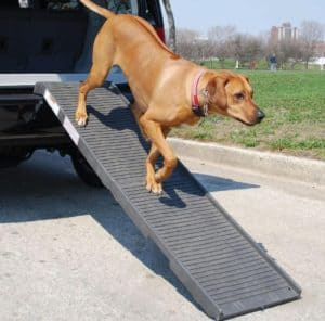 dog ramps for SUVs