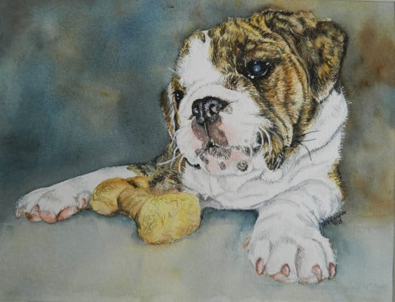traditional pet portraits