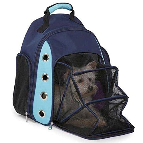 dog carrier rucksack
