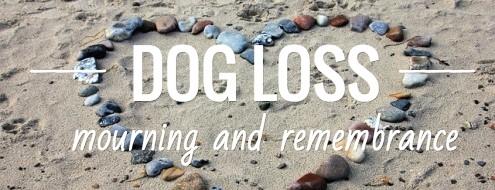 dog mourning