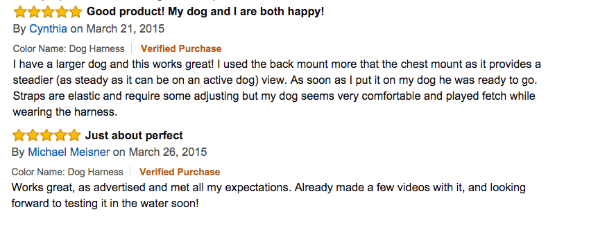 gopro dog mount reviews