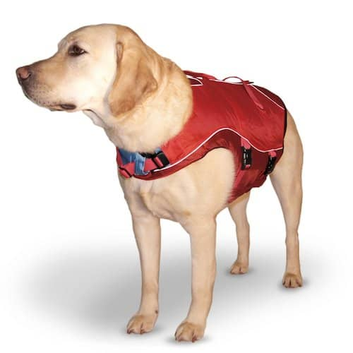 Turf N Surf >> 5 Best Dog Life Vests: Canine Safety While At Sea!
