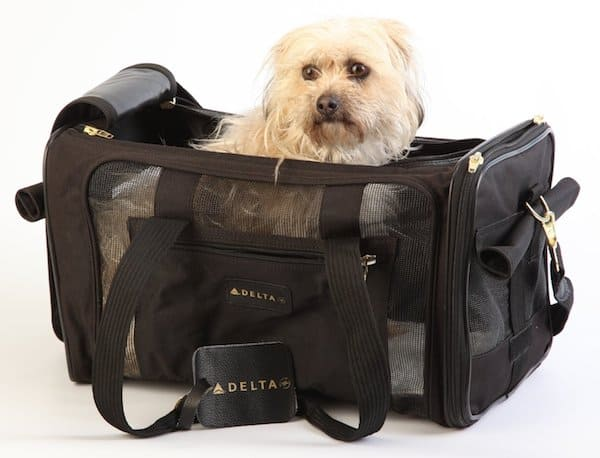 8 best airline approved pet carriers for in cabin flights for Air travel with dog in cabin