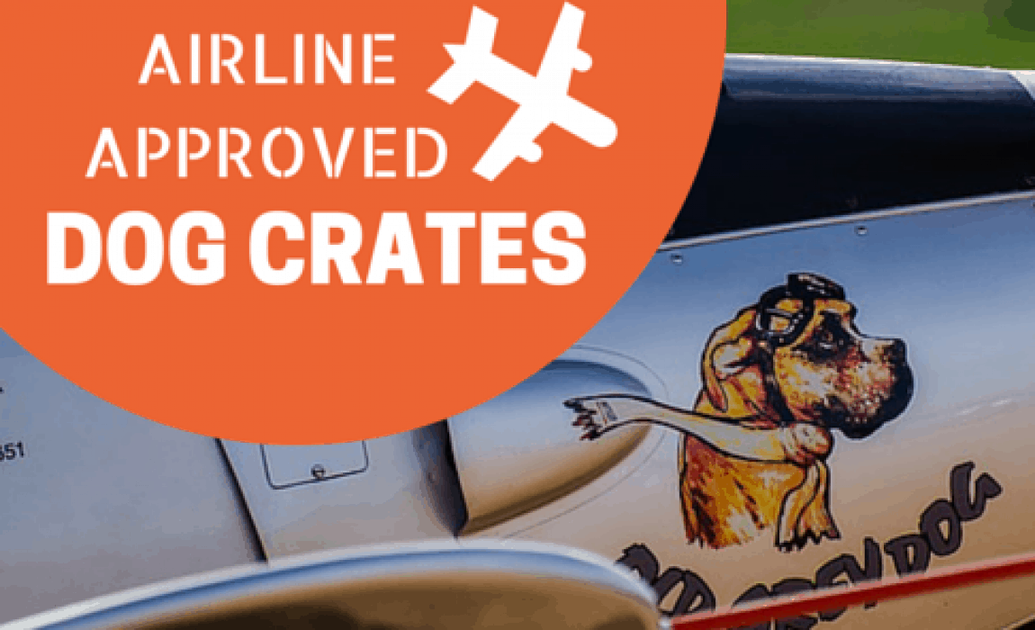 1f965fdfd749 3 Best Airline Approved Dog Crates (For When Fido Flies)