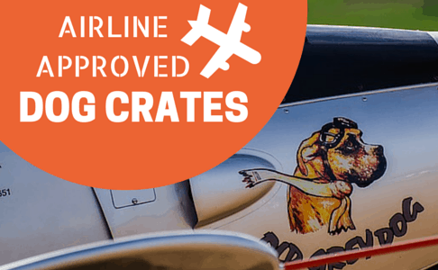3 Best Airline Roved Dog Crates For