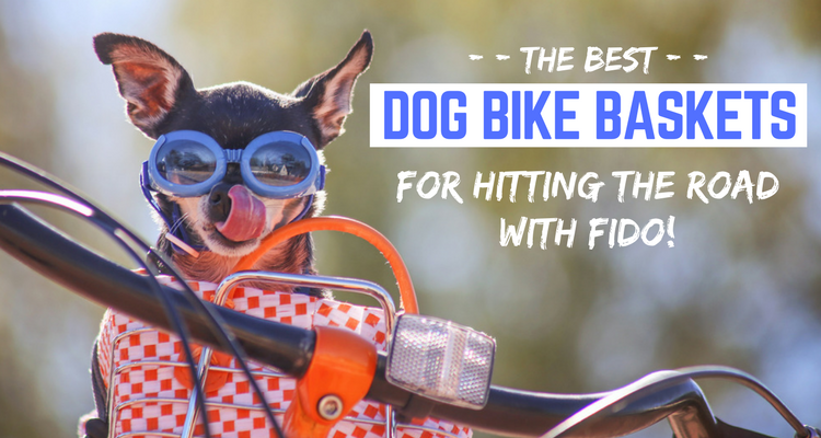 best dog bike basket