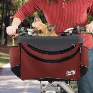 7 Best Dog Bike Baskets Safe Bicycle Riding With Dogs