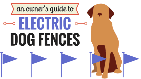 7 best invisible dog fences in ground vs wireless vs physical fence electric dog fences solutioingenieria Gallery
