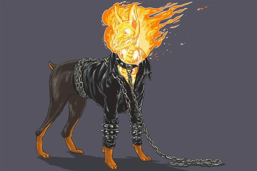 ghost rider dog