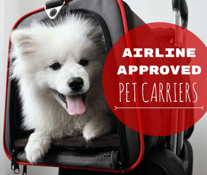 airline approved pet carrier reviews