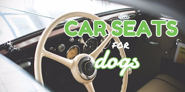 4 best car seats for dogs choosing the best dog car seat. Black Bedroom Furniture Sets. Home Design Ideas