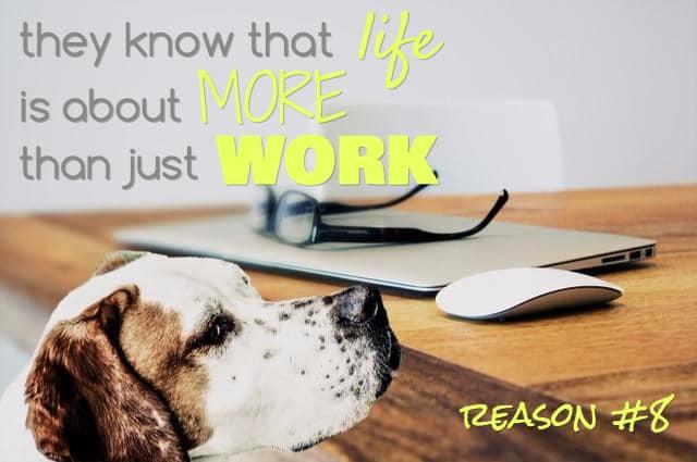 best dog sayings