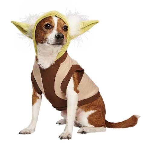 funniest dog halloween costume