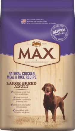 recommended dog food for big dogs