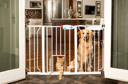 7 Best Indoor Dog Gates Top Dog Gates For Home