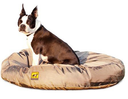4 best chew proof dog beds for rough chewers