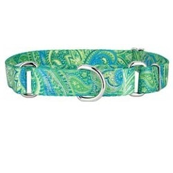 Country-Martingale-Collar