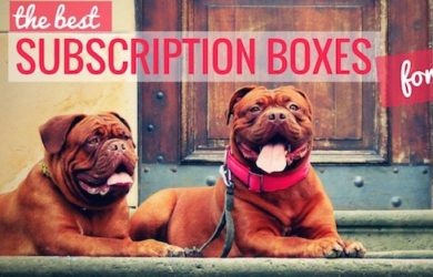 monthly subscription boxes for dogs