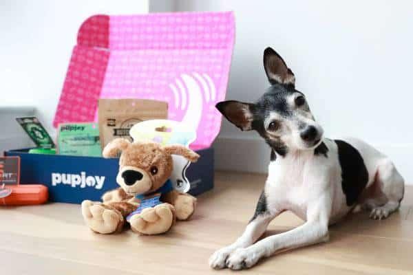 pupjoy-box