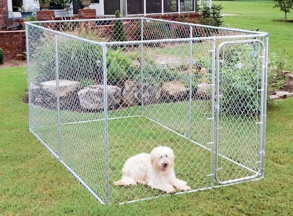5 best outdoor dog kennels canines safe outside 2018 for What is dog boarding