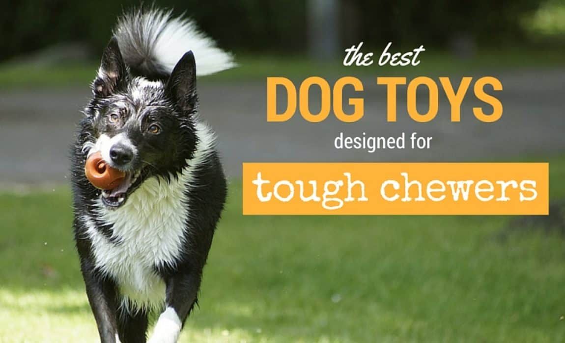 11 Best Indestructible Dog Toys For Aggressive Chewers 2019