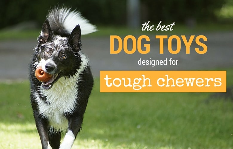 19 Best Indestructible Dog Toys For Aggressive Chewers [2020