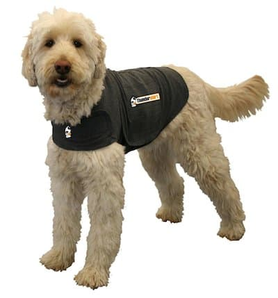 Make Your Own Thundershirt For Dogs