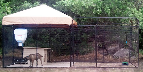 ultimate outdoor dog kennel