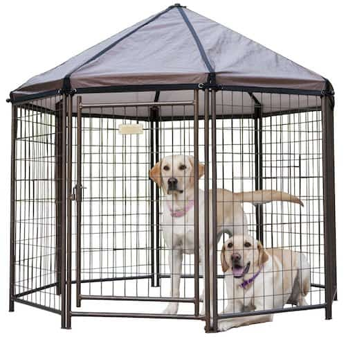 Terrific 5 Best Outdoor Dog Kennels Canines Safe Outside 2019 Reviews Interior Design Ideas Grebswwsoteloinfo