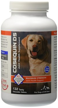 Can Dogs Have Glucosamine Tablets