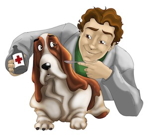 Can You Give Ibuprofen To Dogs For Pain