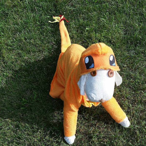 charmander dog halloween costume