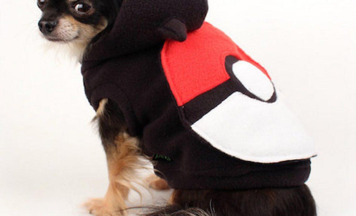dog pokemon sweatshirt