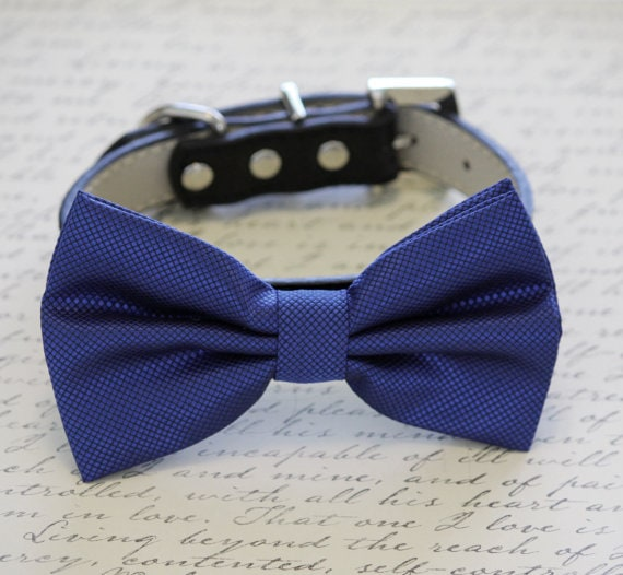 dog wedding bowtie