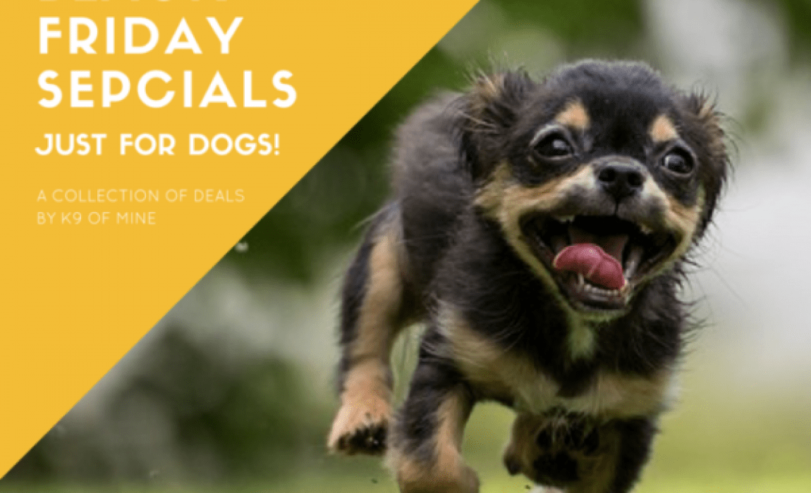 0a61b6999 2018 Cyber Monday Dog Deals & Steals: Hottest Deal for TODAY!