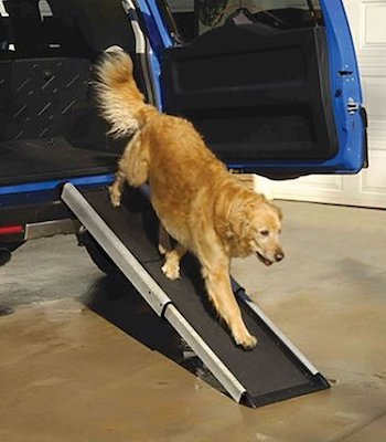dog arthritic ramp