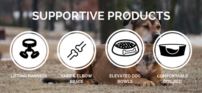 dog arthritic supportive products