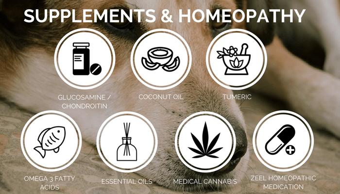 dog arthritis supplements