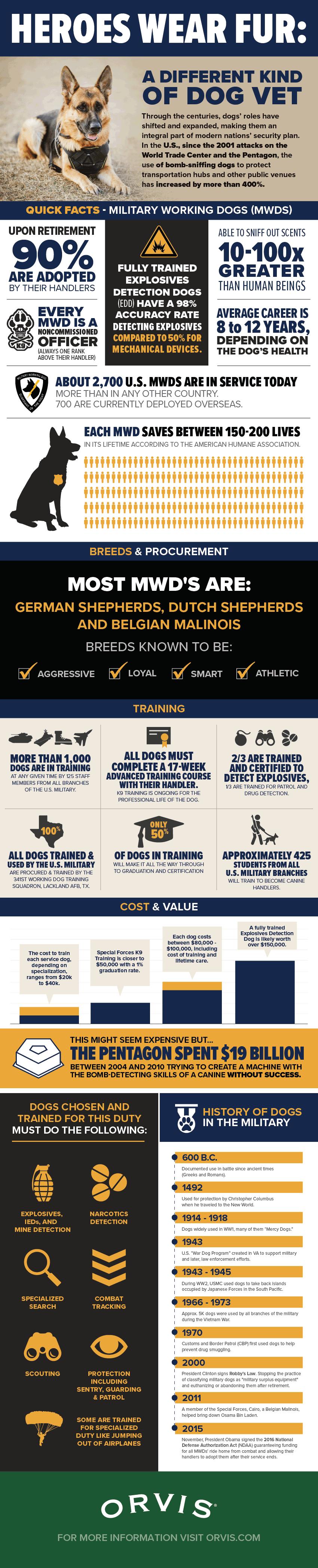 veteran dog infographic