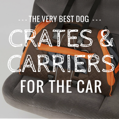3 Best Dog Crates & Carries For Car Travel: 2019 Reviews & Ratings