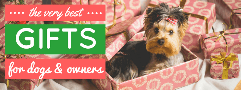 best-gifts-for-dogs